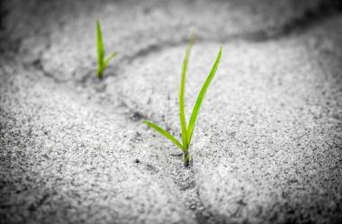 Esperança: o sentimento que nos move